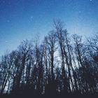 Grundtvigs deilige blå himmel